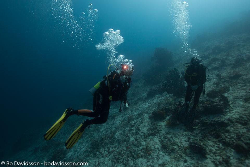 BD-151228-Sumilon-1223-Homo-sapiens.-Linnaeus.-1758-[Diver].jpg